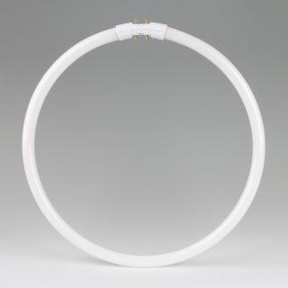 Osram T5 Ringform Leuchtstofflampe 22W/840 kaltweiß